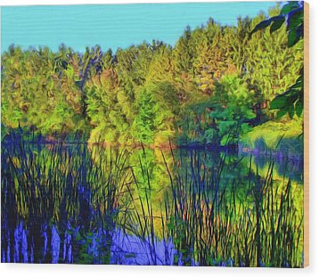 Wooded Shore Through Reeds Wood Print by Dennis Lundell