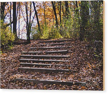 Wooded Stairs Wood Print