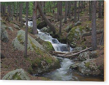 Wooded Stream Wood Print by Matt Helm