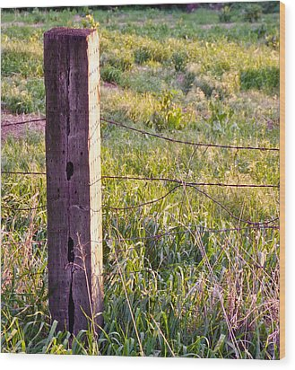 Wooden Fencepost Wood Print by Tracy Salava