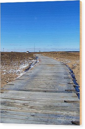 Wood Print featuring the photograph Plum Island by Eunice Miller