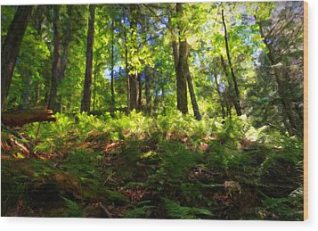 Woodland Wood Print by Lars Lentz