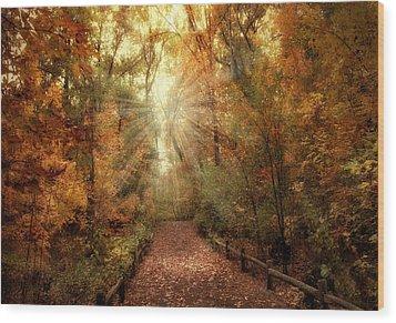 Woodland Light Wood Print by Jessica Jenney