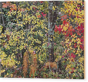 Woodland Tapestry Wood Print by Alan L Graham