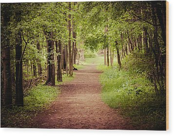Woodland Trail Wood Print