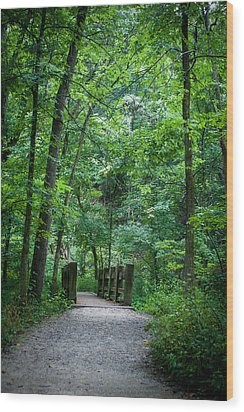 Wood Print featuring the photograph Woodland Trail by Wayne Meyer