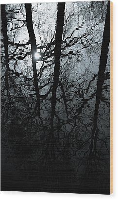 Woodland Waters Wood Print by Dave Bowman
