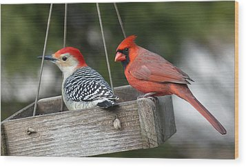 Woodpecker And Cardinal Wood Print by John Kunze