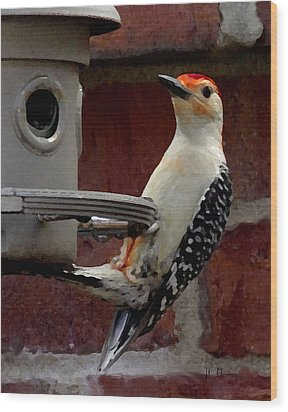 Wood Print featuring the photograph Woodpecker Red Bellied by James C Thomas