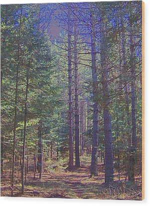 Wood Print featuring the photograph Woods II by Shirley Moravec