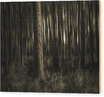 Woods Wood Print by Mario Celzner