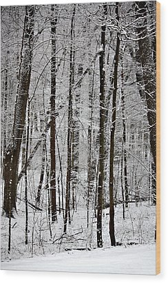 Woods On A Snowy Night Wood Print by Penny Hunt
