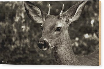 Woodside Deer Wood Print