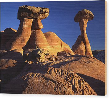 Woody Toadstools Wood Print by Ray Mathis