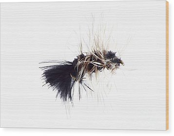 Wooly Bugger Wood Print by Lawrence Burry