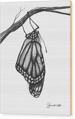 Words Of A Butterfly Wood Print
