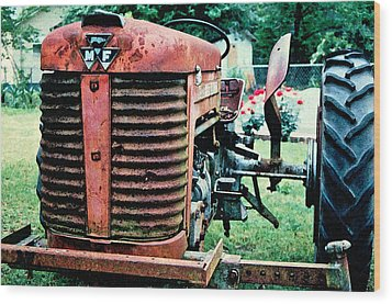 Wood Print featuring the photograph Workhorse by Patricia Greer