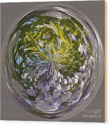 World Of Wisteria Wood Print by Anne Gilbert