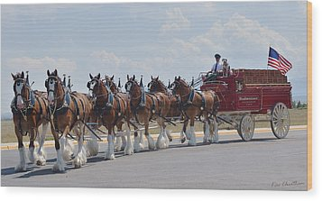 World Renown Clydesdales 2 Wood Print