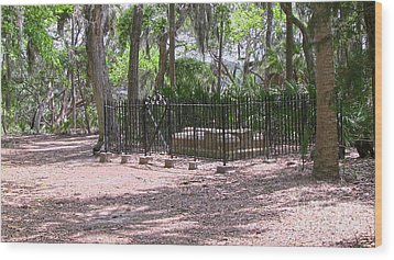 Wormsloe Cemetery Plot Wood Print by D Wallace
