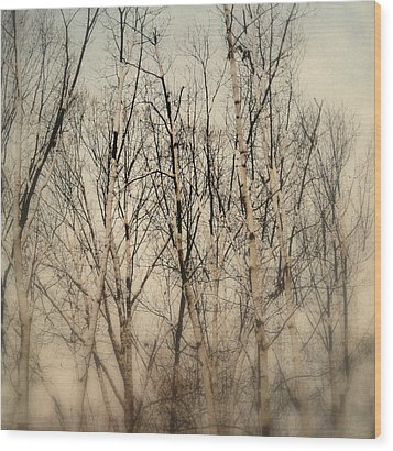 Wrapped In Snow Wood Print by Michelle Ayn Potter