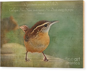 Wren With Verse Wood Print by Debbie Portwood