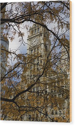 Wrigley Building In Autumn  Wood Print by Leslie Leda