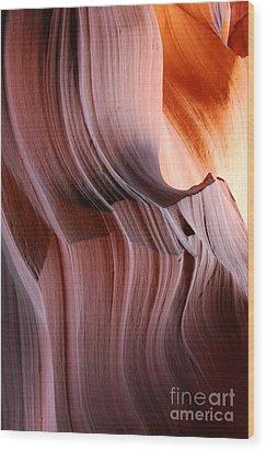 Wrinkles  Wood Print by Catherine Lau