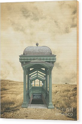 Wrong Train Right Station Wood Print by Edward Fielding