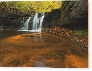 Wyandot Falls Wood Print