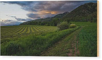 Wyoming Pastures Wood Print by Chad Dutson