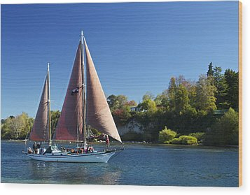 Yacht Fearless On Lake Taupo  Wood Print by Venetia Featherstone-Witty