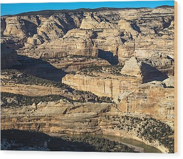 Yampa River Canyon In Dinosaur National Monument Wood Print by Nadja Rider