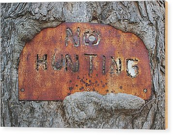 Years Ago Wood Print by Randy Pollard