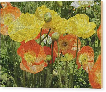 Yellow And Orange Poppies Wood Print by Dee Meyer