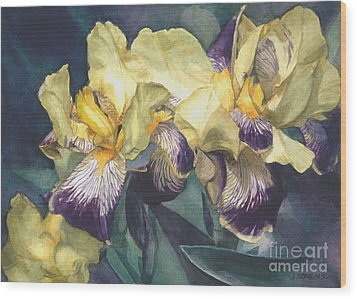 Watercolor Of A Tall Bearded Iris Painted In Yellow With Purple Veins Wood Print