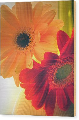 Yellow And Red Gerberas Wood Print