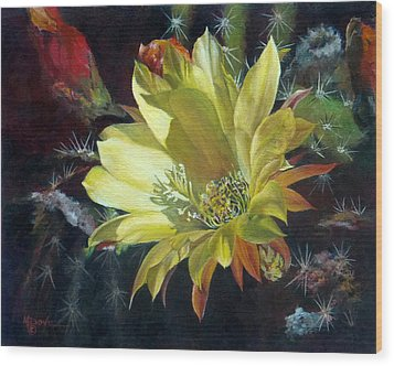 Yellow Argentine Giant Cactus Flower Wood Print