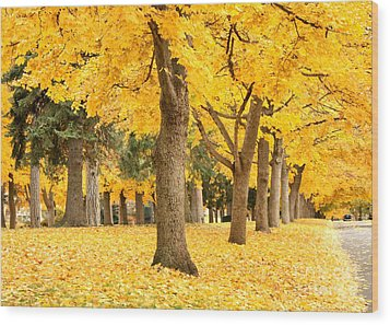 Yellow Autumn Wonderland Wood Print by Carol Groenen