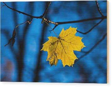 Yellow Blues - Featured 3 Wood Print by Alexander Senin