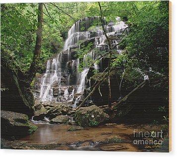 Yellow Branch Falls Wood Print
