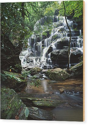 Yellow Branch Falls Wood Print