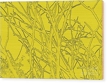 Yellow Branches Wood Print by Carol Lynch