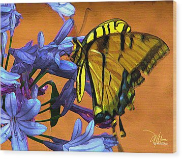 Yellow Butterfly On Agapanthus Wood Print