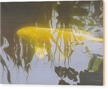 Yellow Carp In The Morning Wood Print by Robert Conway