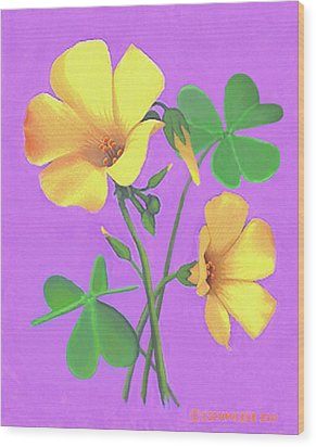 Wood Print featuring the painting Yellow Clover Flowers by Sophia Schmierer