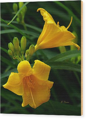 Wood Print featuring the photograph Yellow Daylilies by James C Thomas