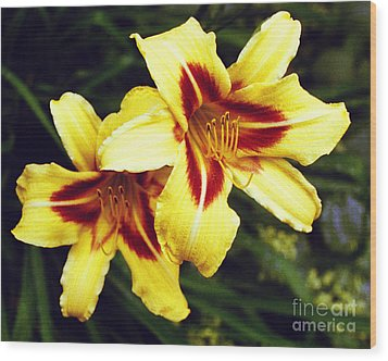 Wood Print featuring the photograph Yellow Daylilies  by Tom Brickhouse