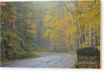 Yellow Fall Roadside Scenic Wood Print