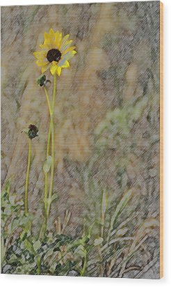 Yellow Flower Wood Print by Joyce  Wasser